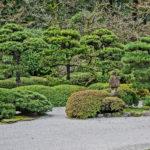 schottergaerten-verbot-japanese-garden
